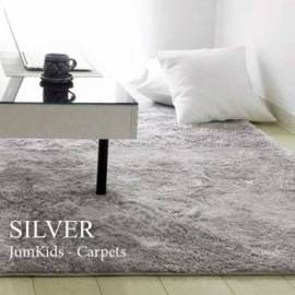 Soft Gray Microfibre Carpet